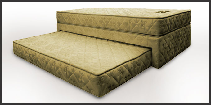 Charming Dianeu0027s Design Pull Out Bed. Dewfoam